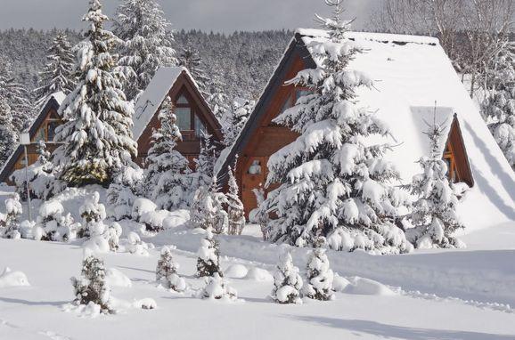 Außen Winter 16 - Hauptbild, Ferienhütte Tennenbronn im Schwarzwald, Tennenbronn, Schwarzwald, Baden-Württemberg, Deutschland