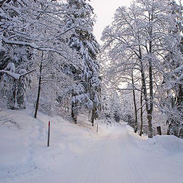 Outside Winter 25, Ferienchalet de la Vue des Alpes im Jura, La Vue-des-Alpes, Jura, Jura, Switzerland
