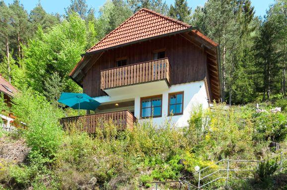 Außen Sommer 1 - Hauptbild, Schwarzwaldhütte Julia, Hornberg, Schwarzwald, Baden-Württemberg, Deutschland