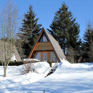 Innen Winter 19, Hütte Jägerwiesen im Bayerischen Wald, Waldkirchen, Bayerischer Wald, Bayern, Deutschland