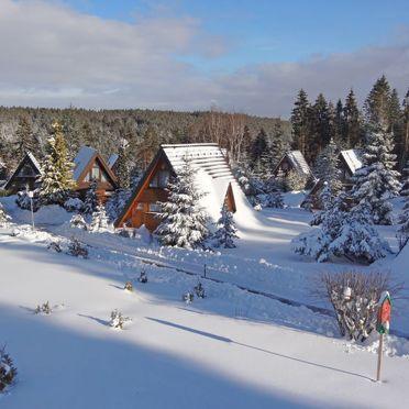 Außen Winter 14, Schwarzwald-Chalet Tennenbronn, Tennenbronn, Schwarzwald, Baden-Württemberg, Deutschland