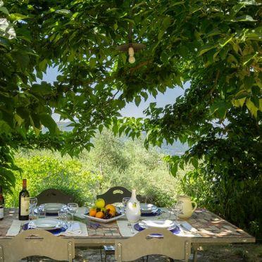 Außen Sommer 3, Villa Cafaggio di Sopra, Florenz, Florenz Stadt und Umgebung, Toskana, Italien