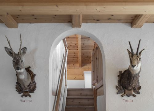 "The ""Cirmolo"" Chalet Suite (1/1) - Aqua Bad Cortina"