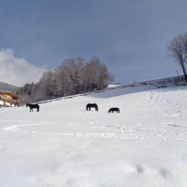 Außen Winter 19, Chalet Hamberg, Kaltenbach, Zillertal, Tirol, Österreich