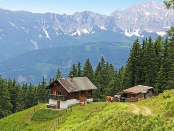 Almhütte Wassertheureralm - Carinthia  - Austria
