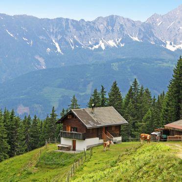 Outside Summer 1 - Main Image, Almhütte Wassertheureralm, Dellach, Kärnten, Carinthia , Austria