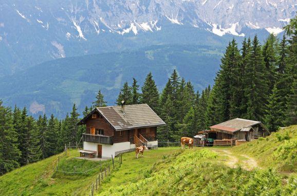 Außen Sommer 1 - Hauptbild, Almhütte Wassertheureralm, Dellach, Kärnten, Kärnten, Österreich